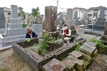 小島家累代の墓全景370.jpg