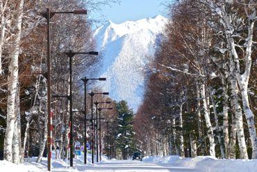 ブログ用②大雪370.jpg