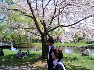 桜中島公園①360.jpg
